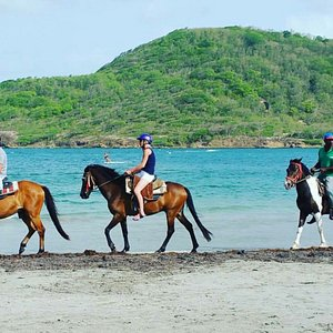 Beautiful day with our horses at the beach in St. Lucia