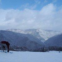 大雪後。腰までのパウダーに会えました