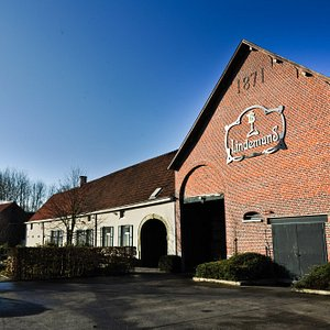 Brewery Lindemans
