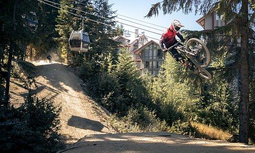 Whistler Mountain Bike Park - Photo: Robin O'Neill