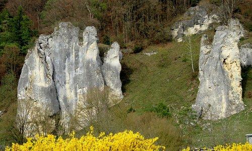 Felsen aus Schwamm-Algen-Kalk bei Dollnstein