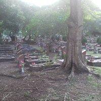 Graves of fallen heroes