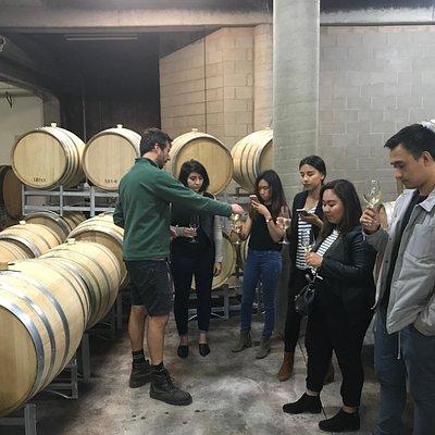 Winemaker tasting sessions