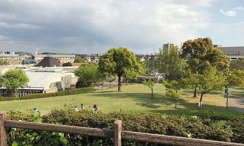 芝生広場など自然と親しめる公園