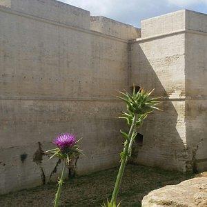 Piccolo cardo di fronte alle Mura