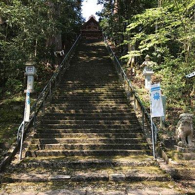苔むした急な階段
