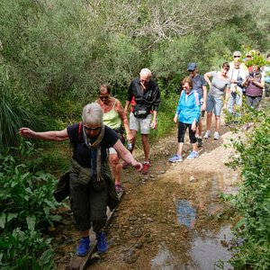 Walking through Torrent de Santa Ponca. It is small parts with some water ...