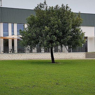 La fachada principal frente al jardin del parque empresarial