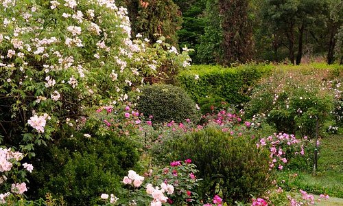 Giardini della Landriana, Valle delle Rose