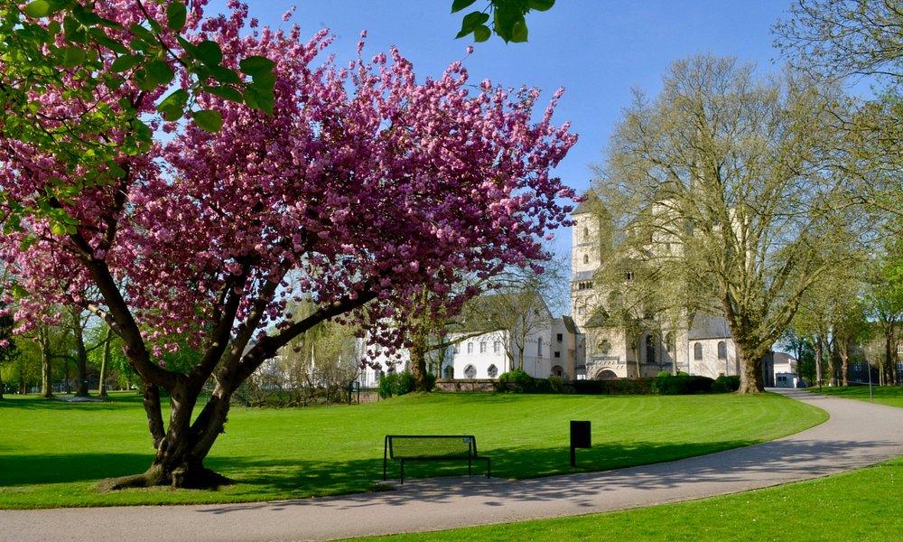 Abteipark im Frühling