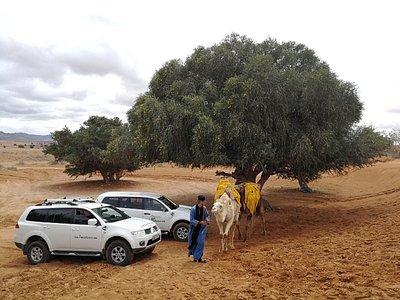 Day trip to Mini Sahara