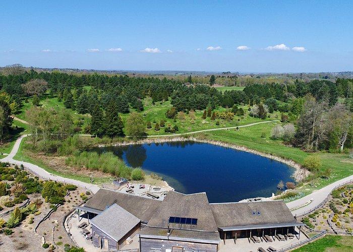 Bedgebury Pinetum - Lake and Cafe