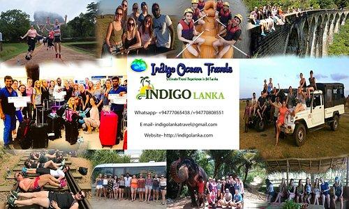 Indigo Lanka