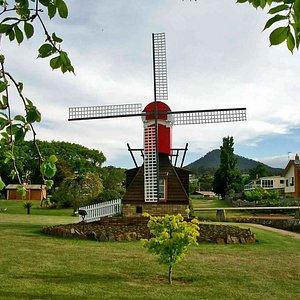 Windmill celebrating Penguin's Dutch heritage