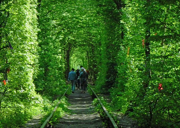 Tunnel of Love!