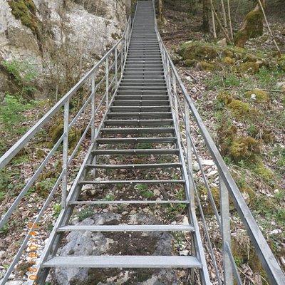 la descente par les escaliers