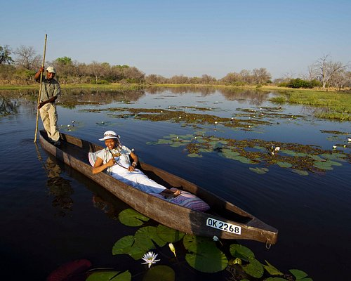 Traditional mokoro excursions offer a tranquil way to explore the Okavango Delta.