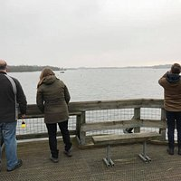 The Barton Broad Boardwalk lookout with spectacular views across Barton Broad's wildlife.