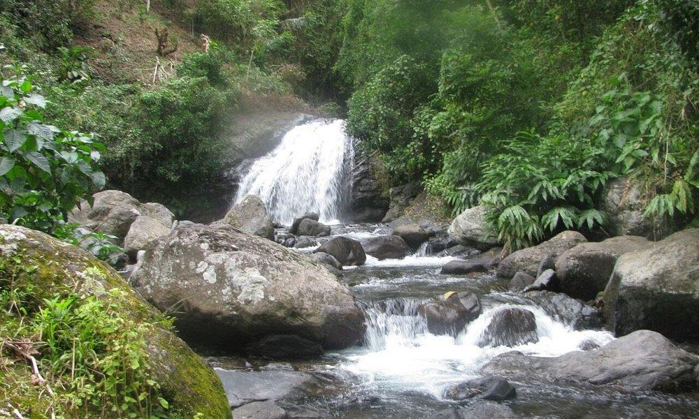 Fish Dunn Falls