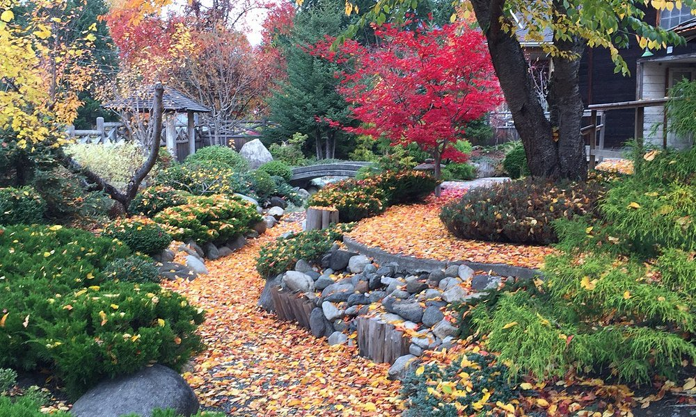 Lovely fall colour at the NIMC in October