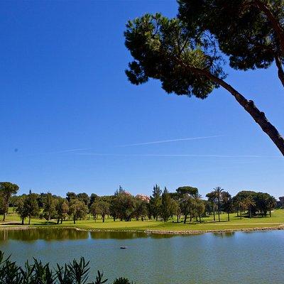 Rio Real Golf Club - Hoyo 12