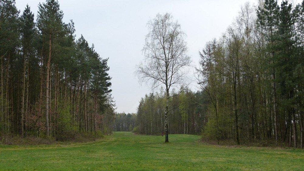 Site Archeologisch Park De Rieten- Meeuwen-Gruitrode 20180413