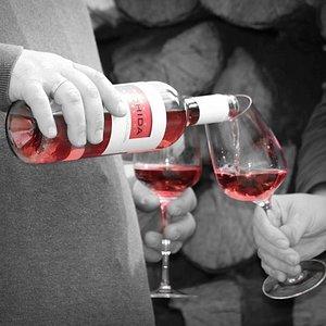 Weinverkostung in unserem Weingut