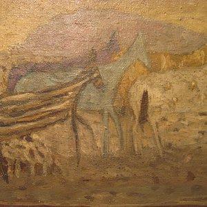 Small horses from Dalmatia