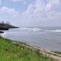Mikunicho Seaside Nature Park