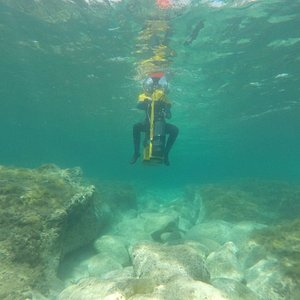 Easiest snorkeling you will ever do!