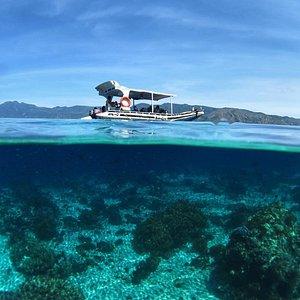 Kanaloa and something beneath the surface