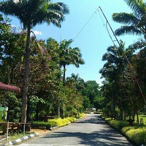 Kuala Berang Recreational Park