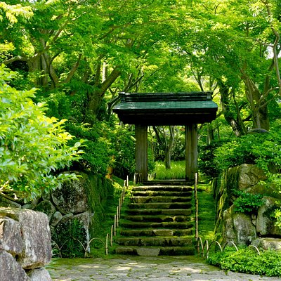 茶の庭入口