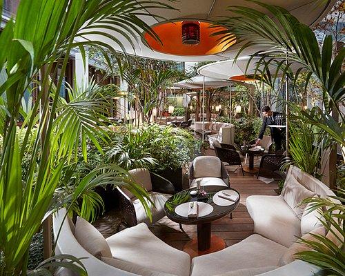 Bar 8 - Garden