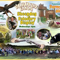 Borough Farm Sheepdog Shows