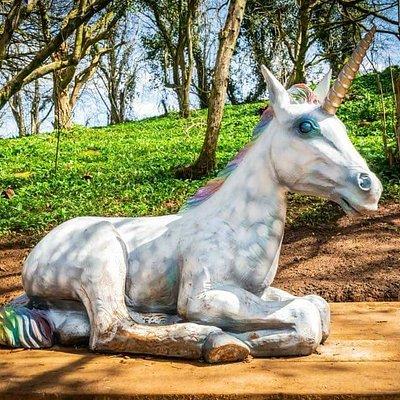 Our beautiful new unicorn