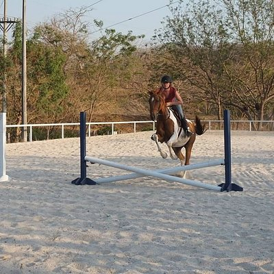 Ruby and Perla del Mar manager Paige jumping