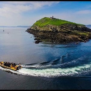 The Beast Off Puffin Island