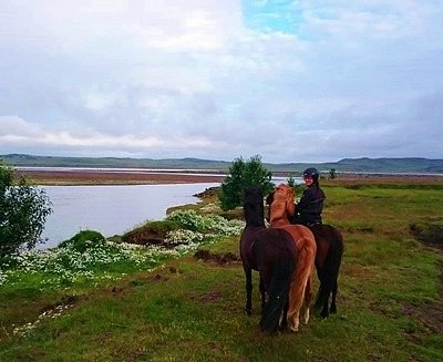 Experienxe to ride the great icelandic horse! Feel free to contact us bjornjo@vorsabae2.is
