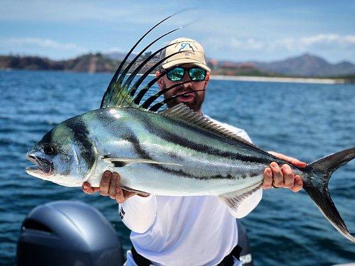 Roosterfish - El Gallo!
