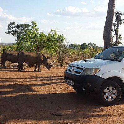 Simply means best in safari activities.