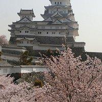 西ノ丸長局(百間廊下)から眺める姫路城