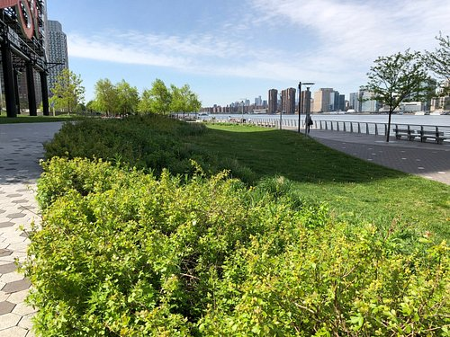 View Down The East River