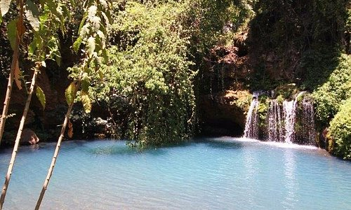 The blue pools in the Ngare Ndare forest.  The best natural swimming pools in Kenya.  And all sa