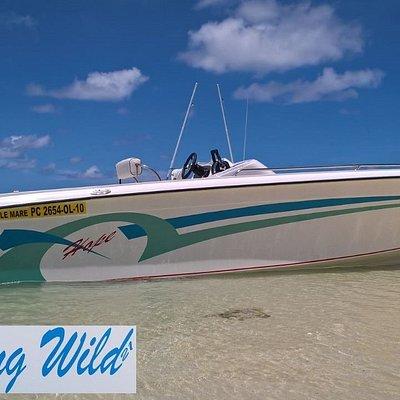 Hope Speedboat Mauritius - Something Wild 21