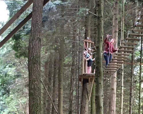 Tree surfing at Tamar Trails