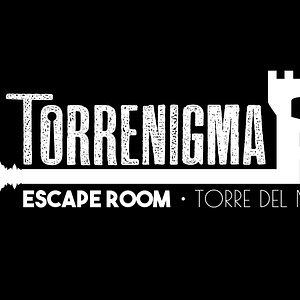 Logotipo Oficial Torrenigma, actualizado Mayo 2018