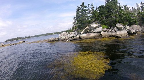 An example of the100 Wild islands, this shot was taken In West ship Harbour Nova scotia