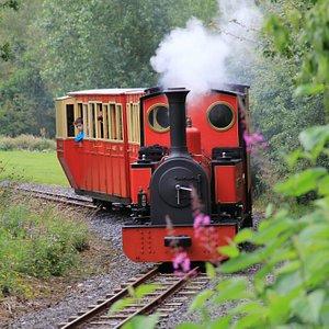 Duchess of Difflin Steam Train