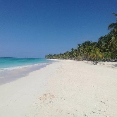 Nuestra playa en isla saona goza de arena blanca y agua color turqueza.